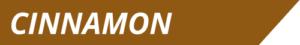Cinnamon Cereal Milk